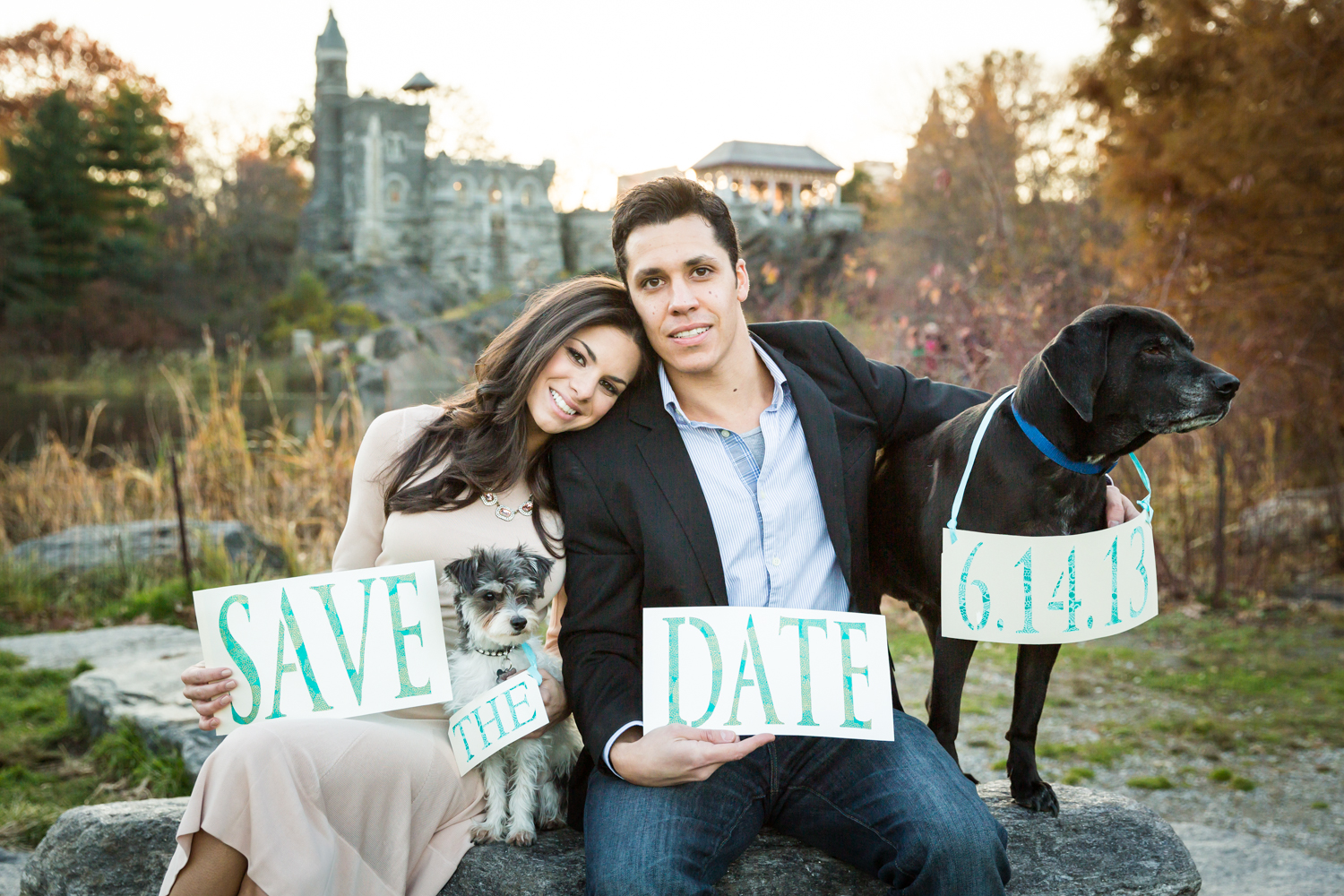 Central Park save-the-date photos of couple sitting on rock with two dogs holding sign