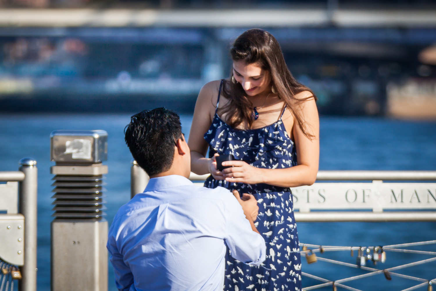 Man asking girlfriend to marry him at Brooklyn Bridge Park