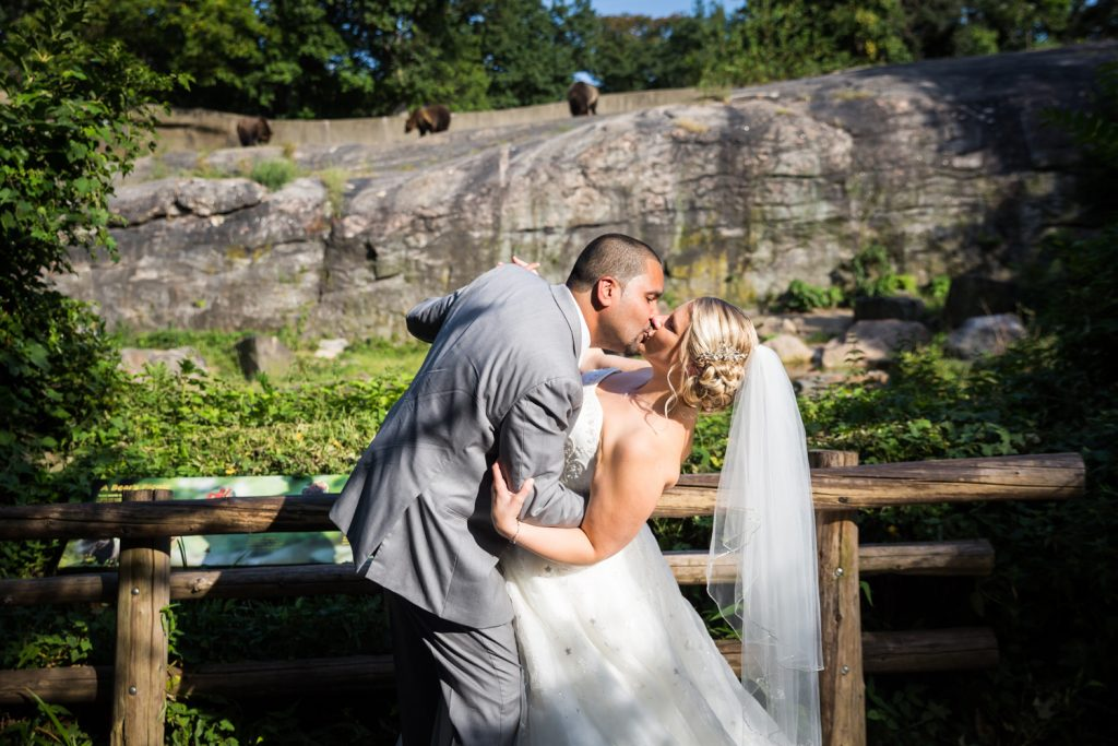 Bride and groom kissing at bear exhibit at a Bronx Zoo wedding