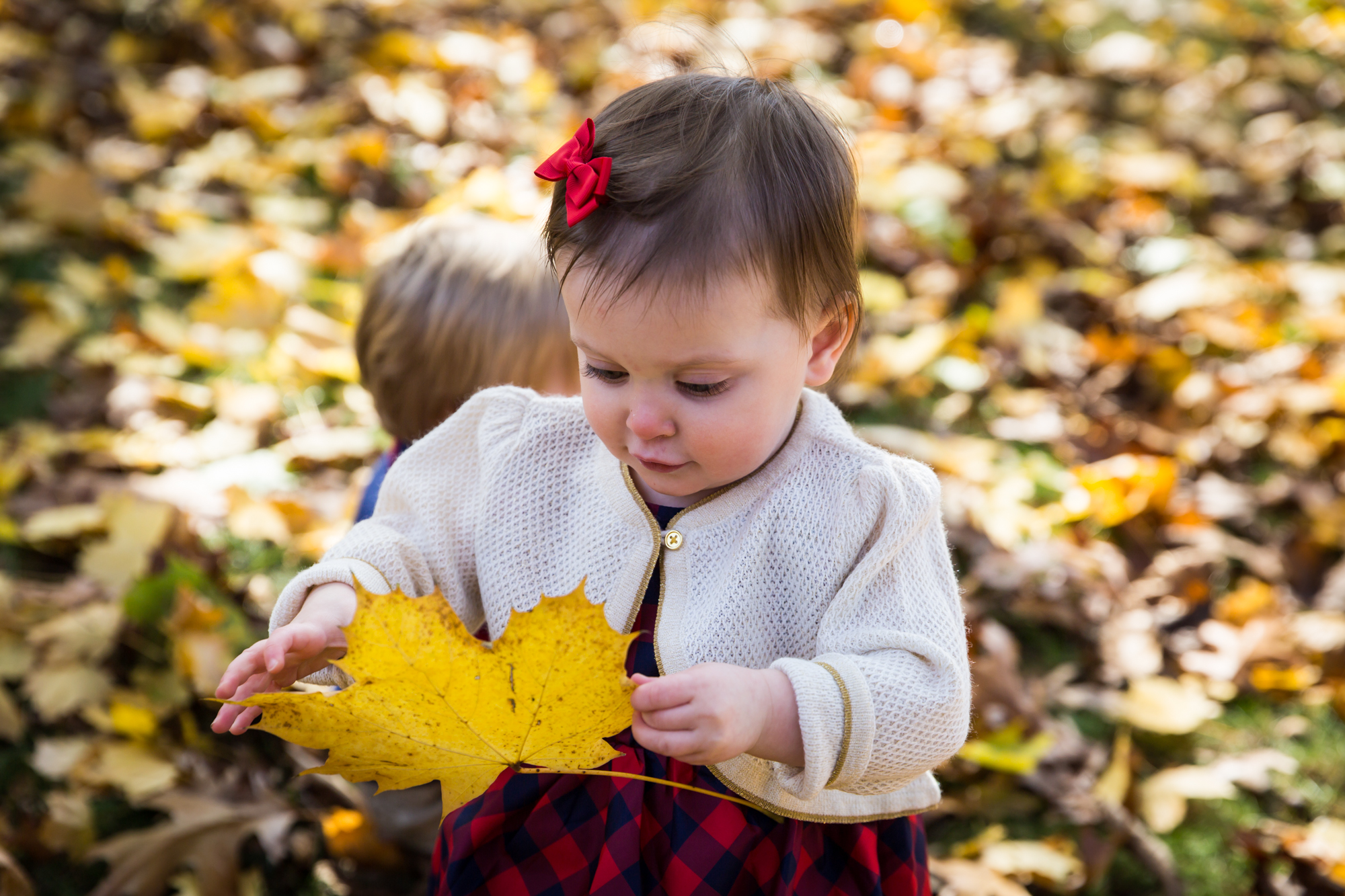 Child with leaf for article on how to get your kids to look into the camera