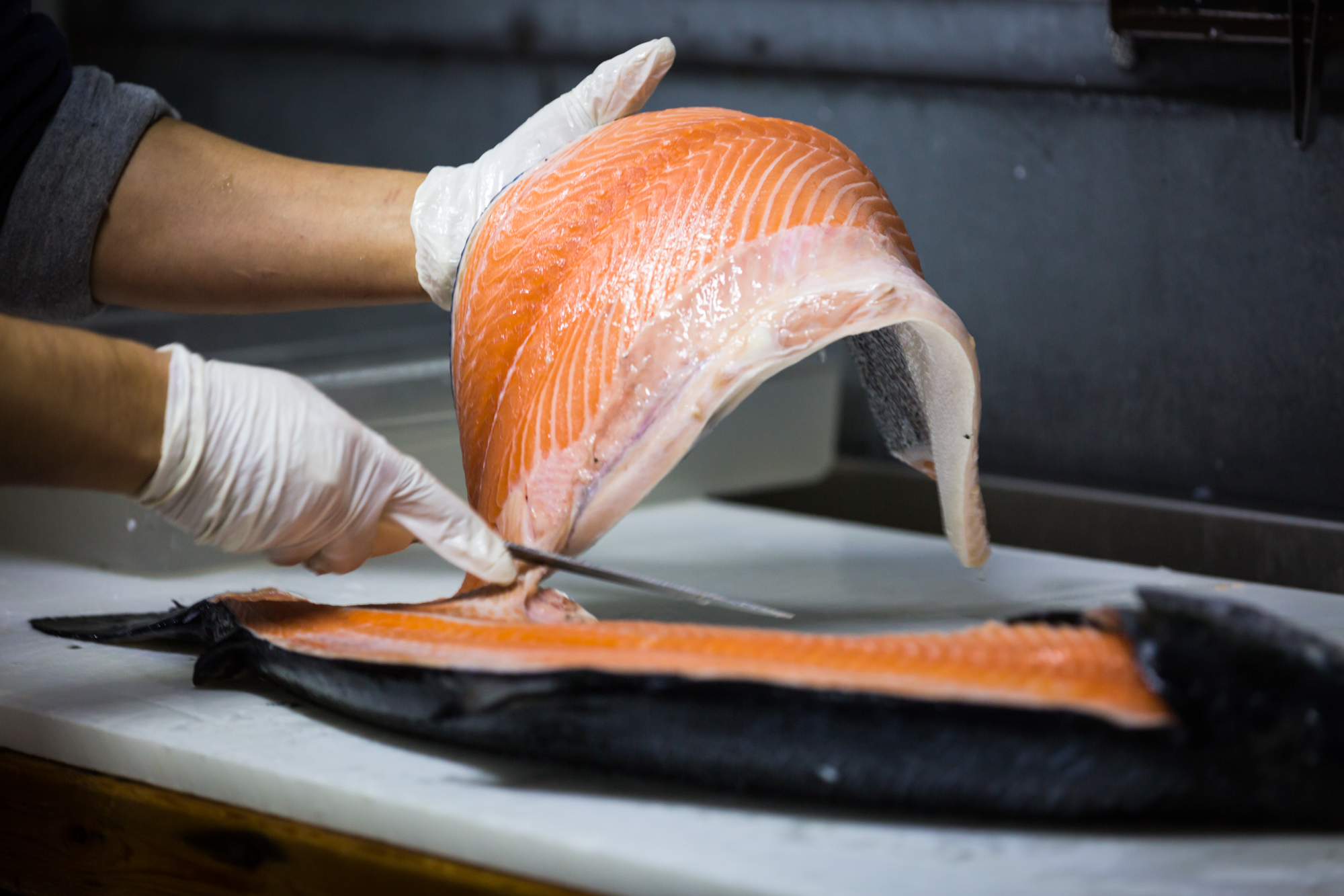 Hand holding salmon for an article on website photography tips
