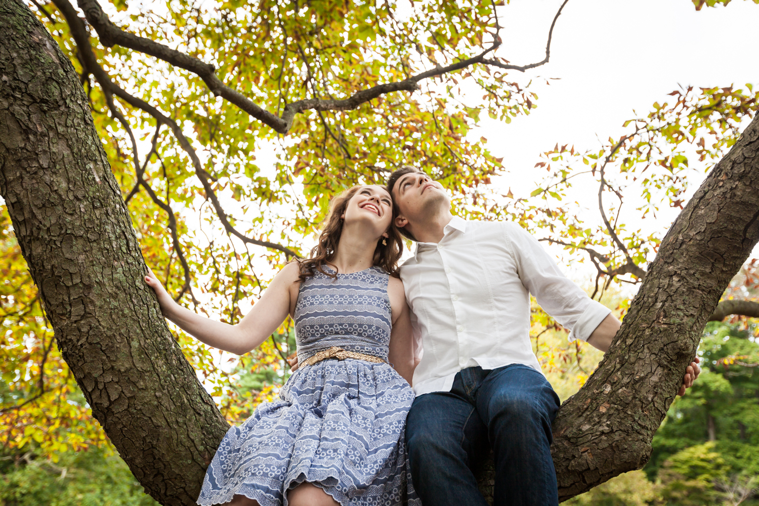 Couple sitting on tree branch looking up at a Lyndhurst Mansion engagement photoshoot