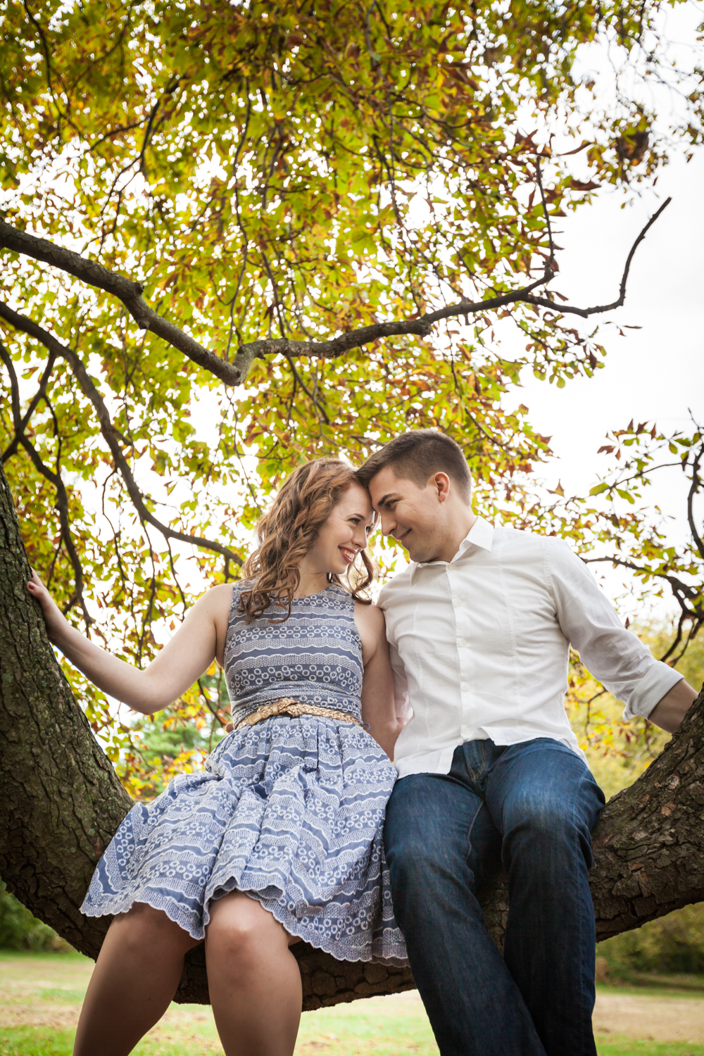 Couple sitting on tree branch touching foreheads