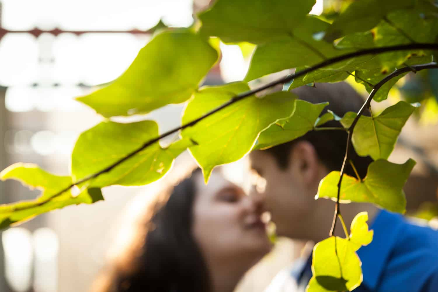 View through leaves of couple kissing during High Line engagement session at sunset