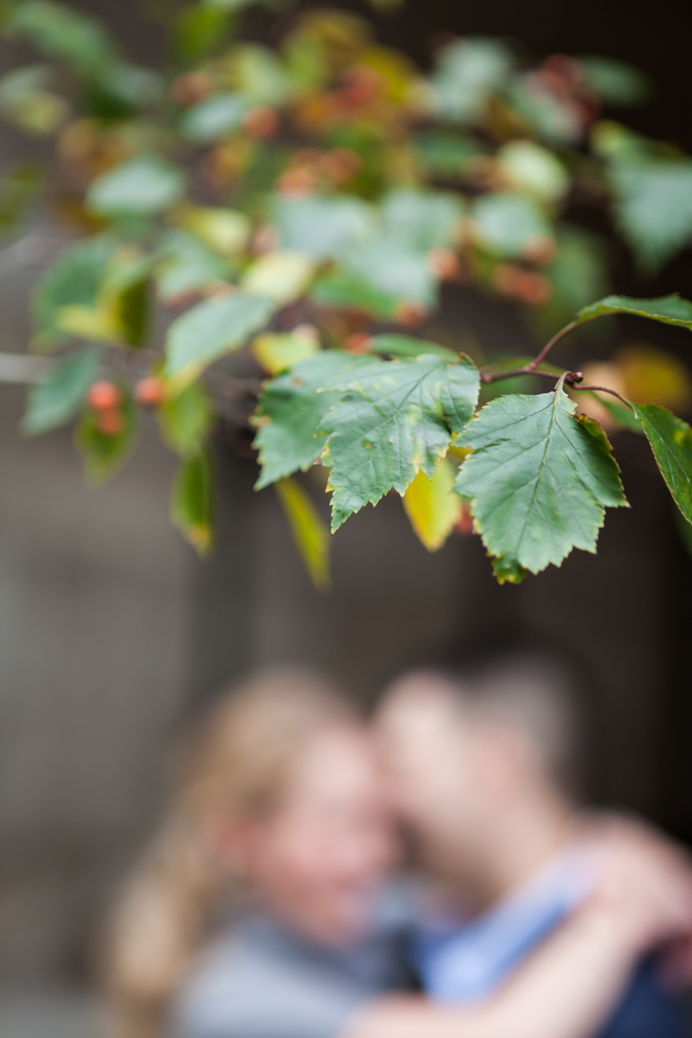 Leaves in focus with couple kissing in background out of focus