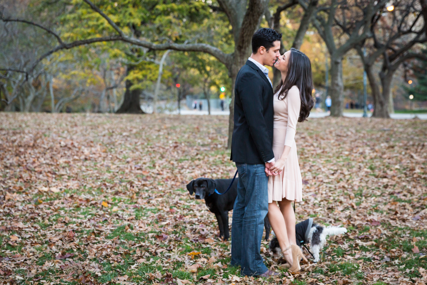Couple kissing with two dogs at their feet