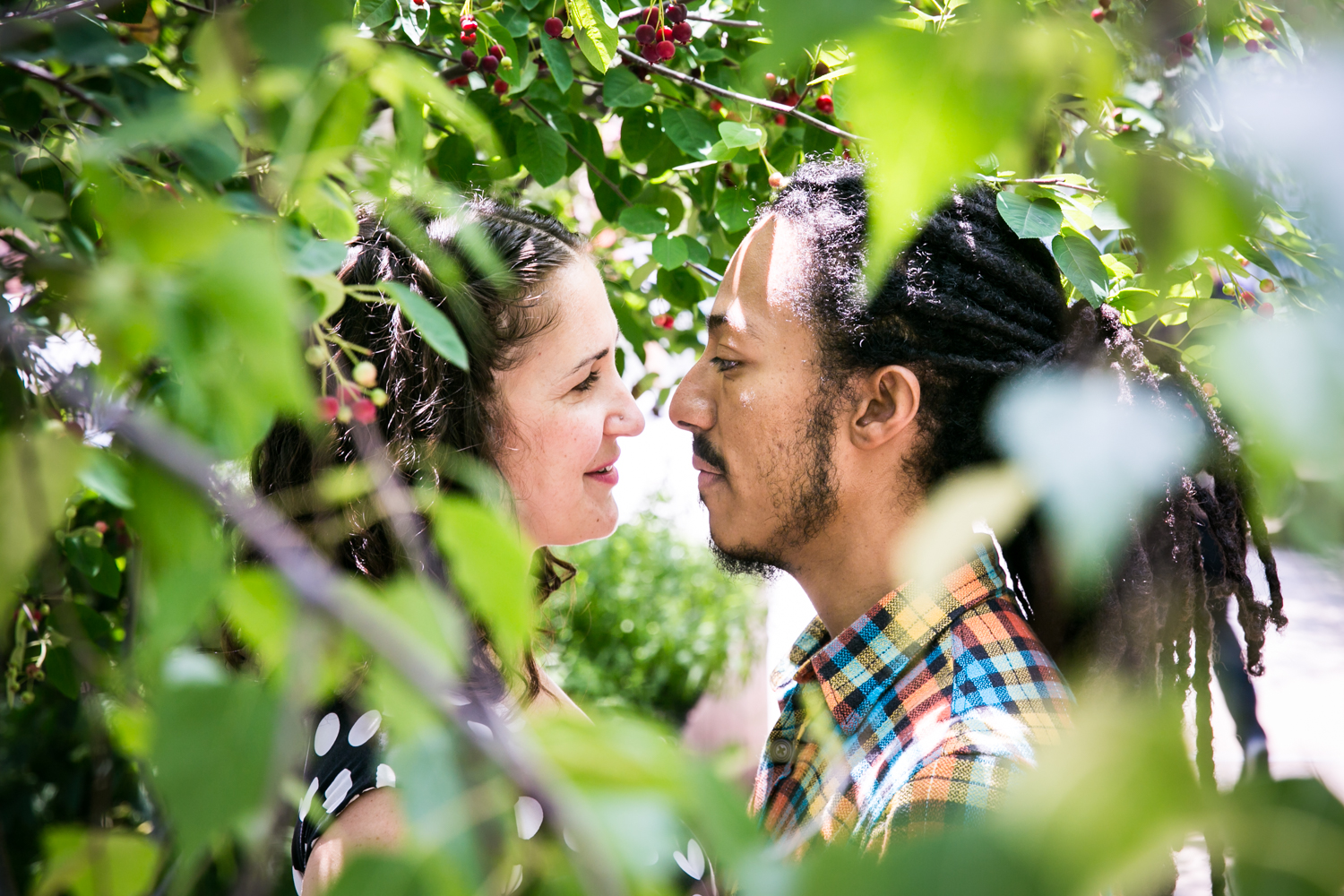 View through leaves of couple looking at each other