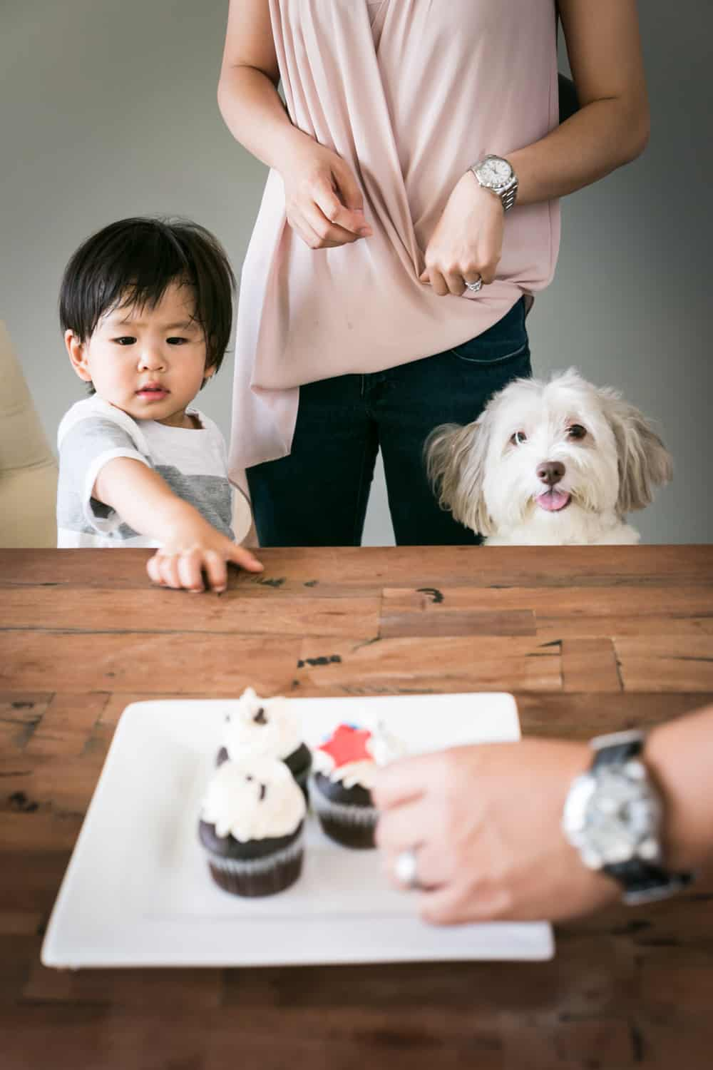 Child pointing to cupcakes with dog watching