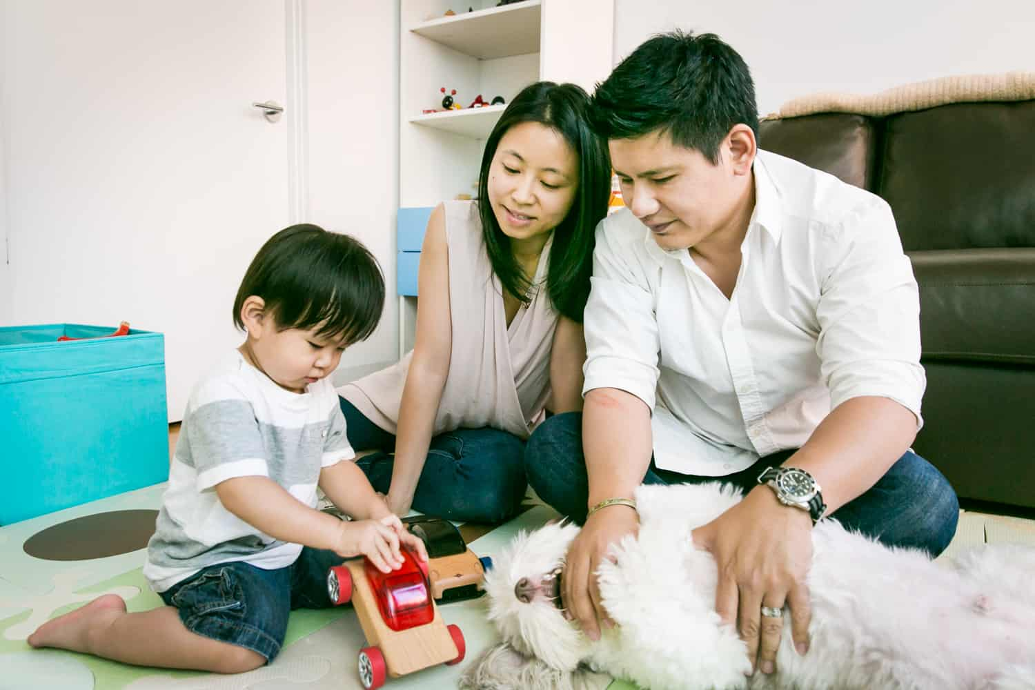 Parents and child playing with dog and toy truck