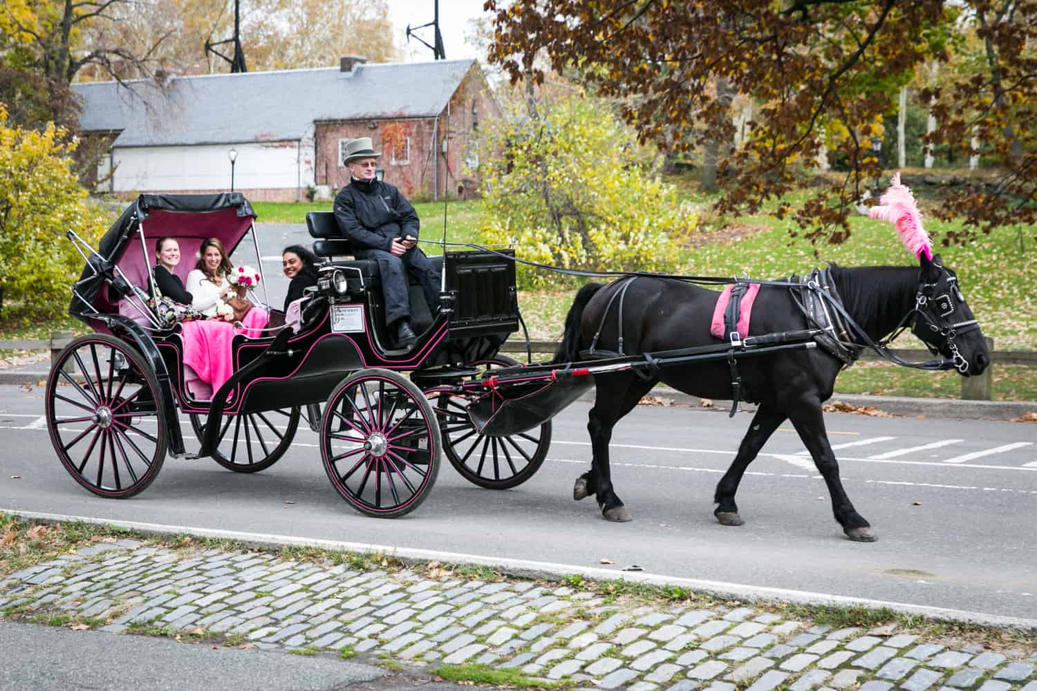 Bride and maid of honor arriving for Bethesda Fountain wedding by horse and carriage