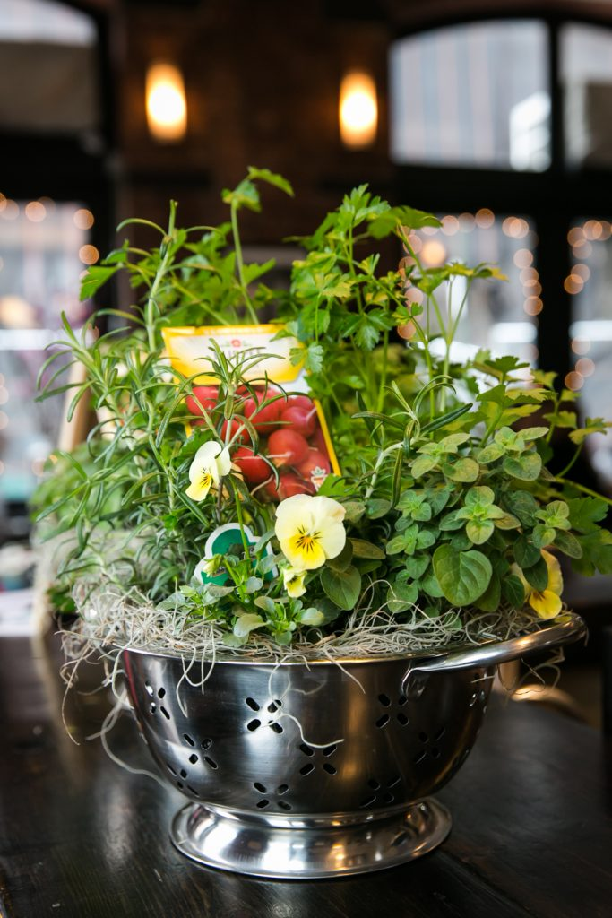 Centerpiece of colander with herbs