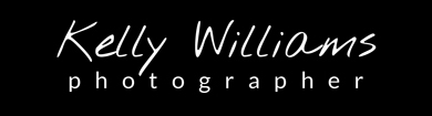 Logo with white writing on black background for an article on website SEO tips