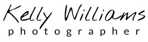 Logo with black writing on white background for an article on website SEO tips