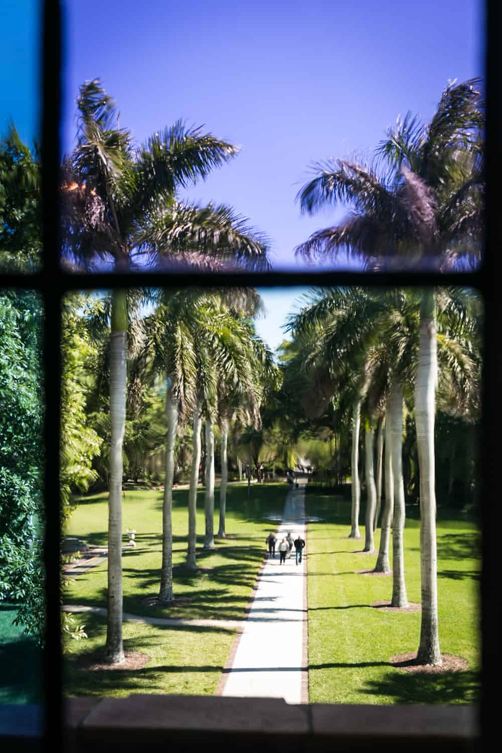 Photos of Sarasota including view of palm-lined pathway in front of Ca d'Zan