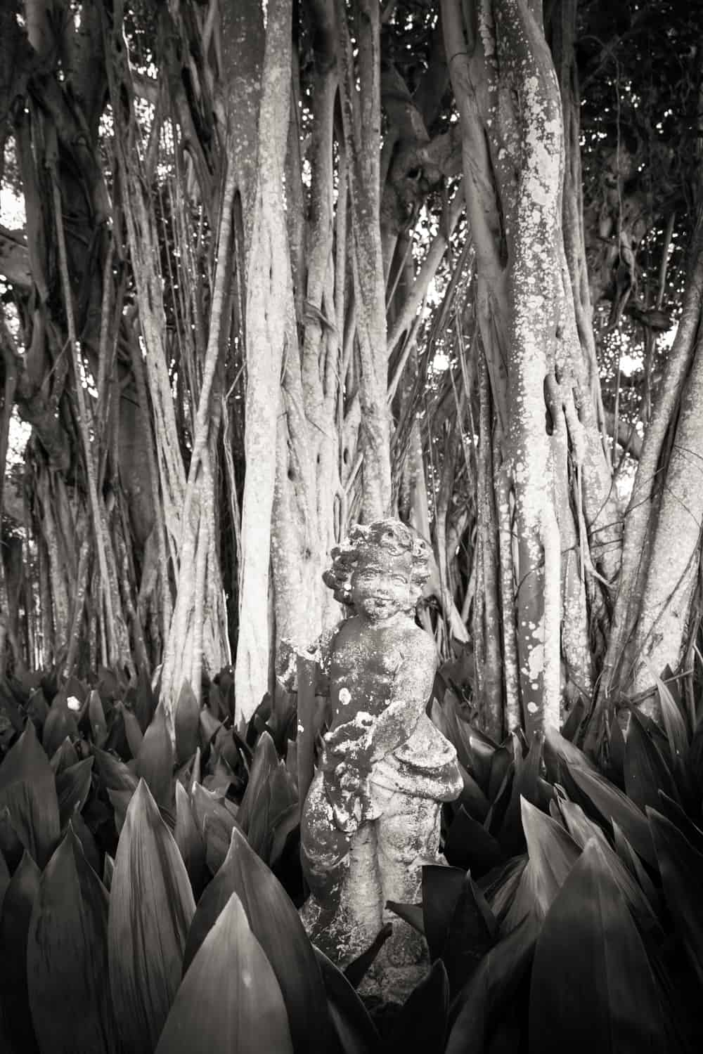 Black and white photo of statue in Ca d'Zan dwarf garden in Sarasota