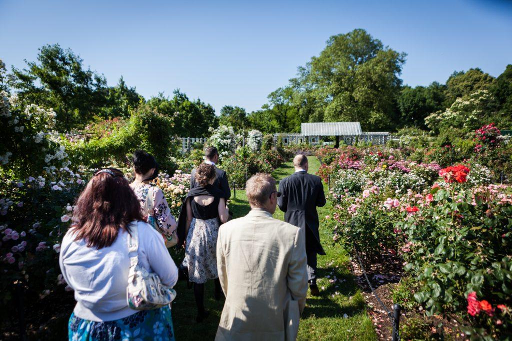 Group of guess walking into Cranford Rose Garden at an Brooklyn Botanic Garden wedding
