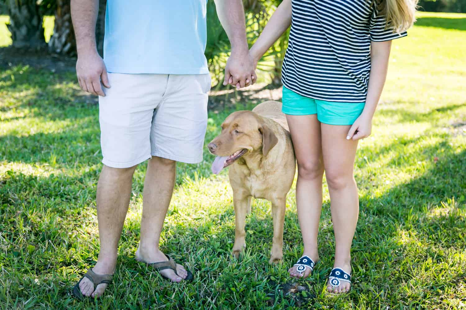 Couple holding hands over dog in backyard