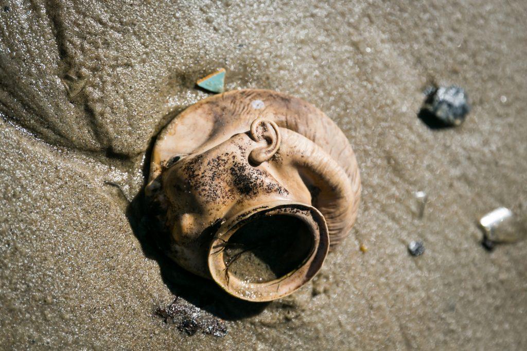 Dead Horse Bay photos of baby doll head on beach