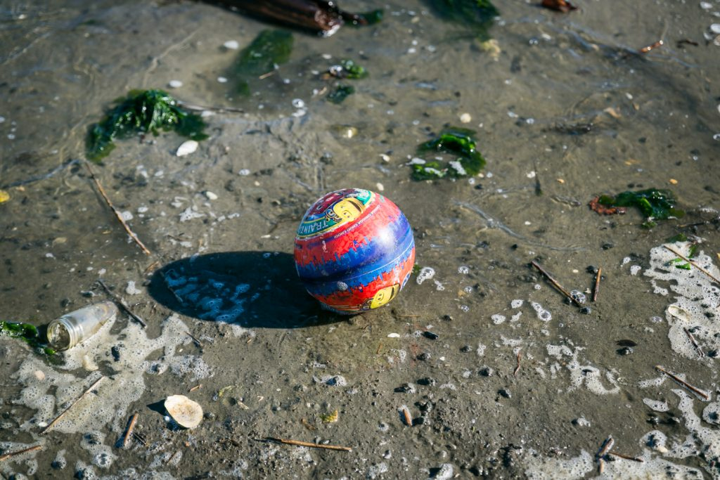 Dead Horse Bay photos of colored ball on beach