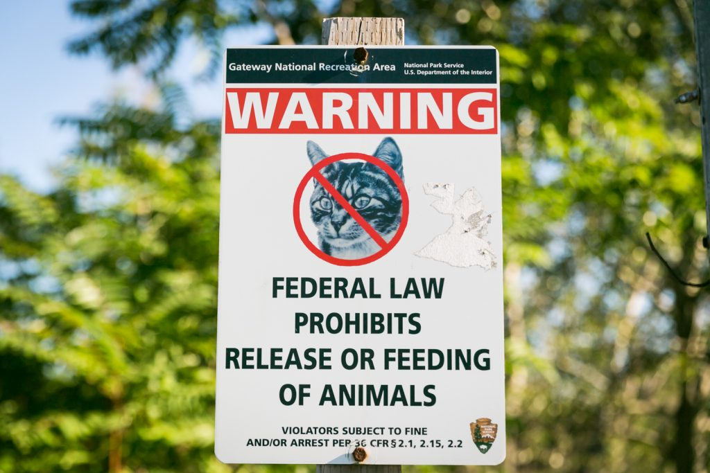 Dead Horse Bay photos of sign prohibiting release or feeding of animals