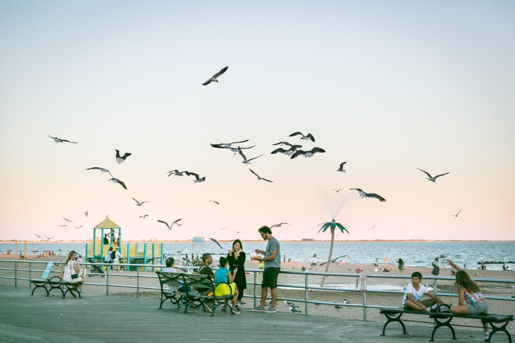 People sitting on bench with seagulls overhead in Coney Island, Brooklyn