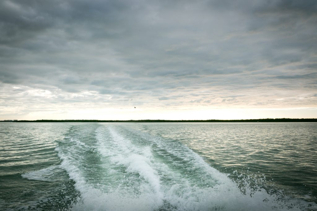 Wake from boat going from Caladesi Island to Honeymoon Island