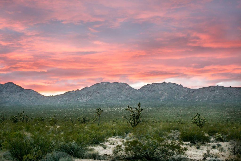 Pink sunset over Mojave National Preserve