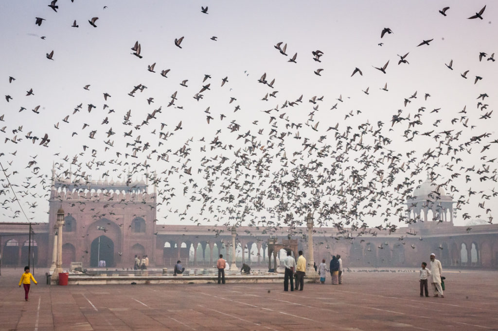 India street photography featuring the Jama Masjid
