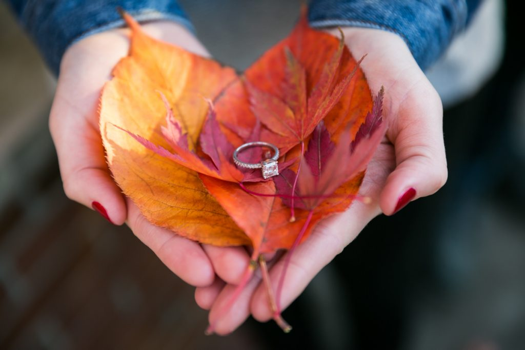 Woman's hands holding engagement ring on orange and red leaves