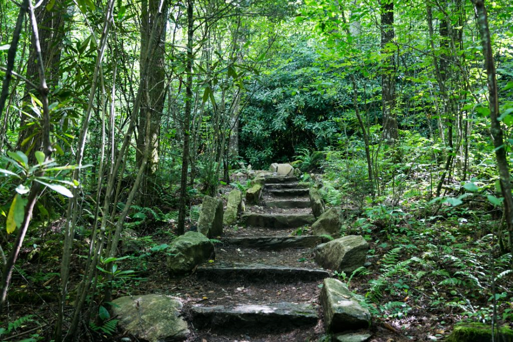 Hiking trail in Highlands by North Carolina photographer, Kelly Williams