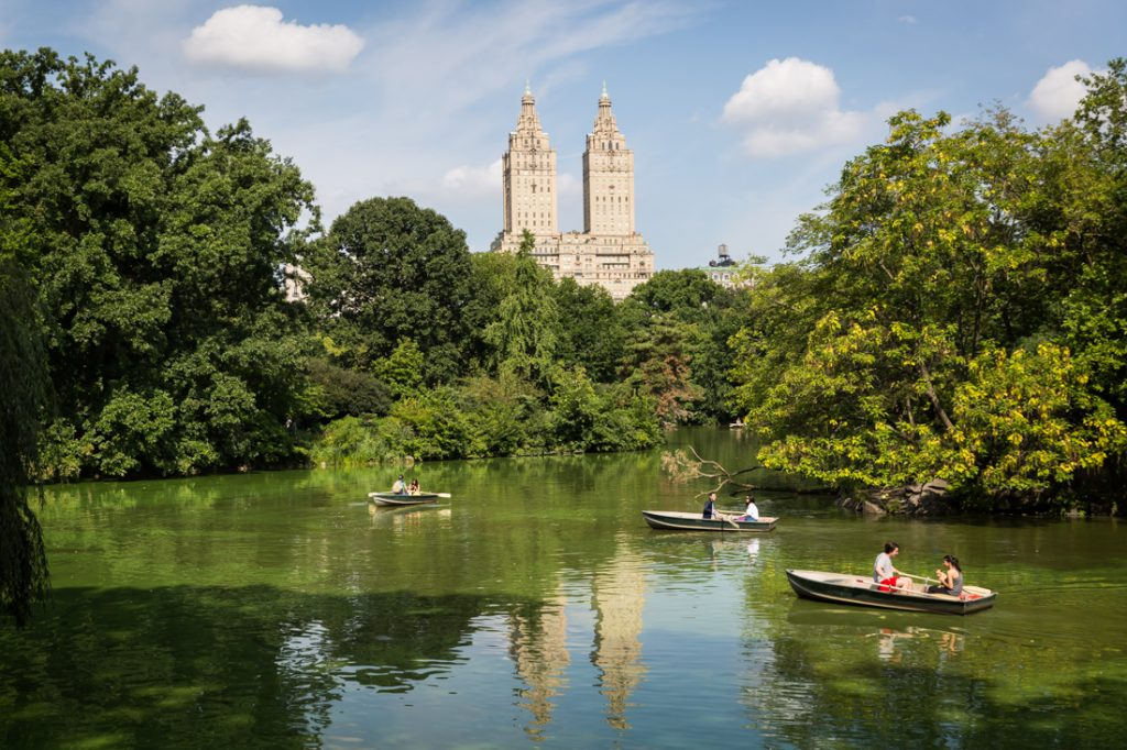 Couple rowing a boat for an article on a Central Park lake proposal