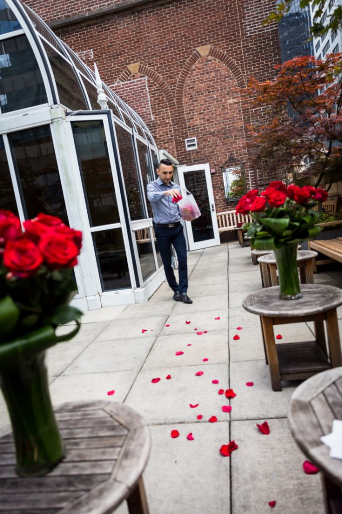 Rose petals for a wedding proposal at the Library Hotel in NYC