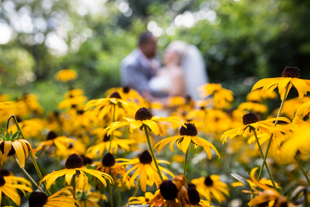 Bride and groom with daisies at a Bronx Zoo wedding