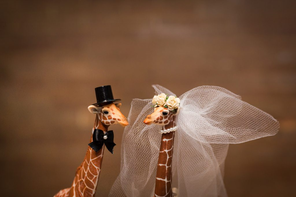 Giraffe bride and groom cake toppers at a Bronx Zoo wedding