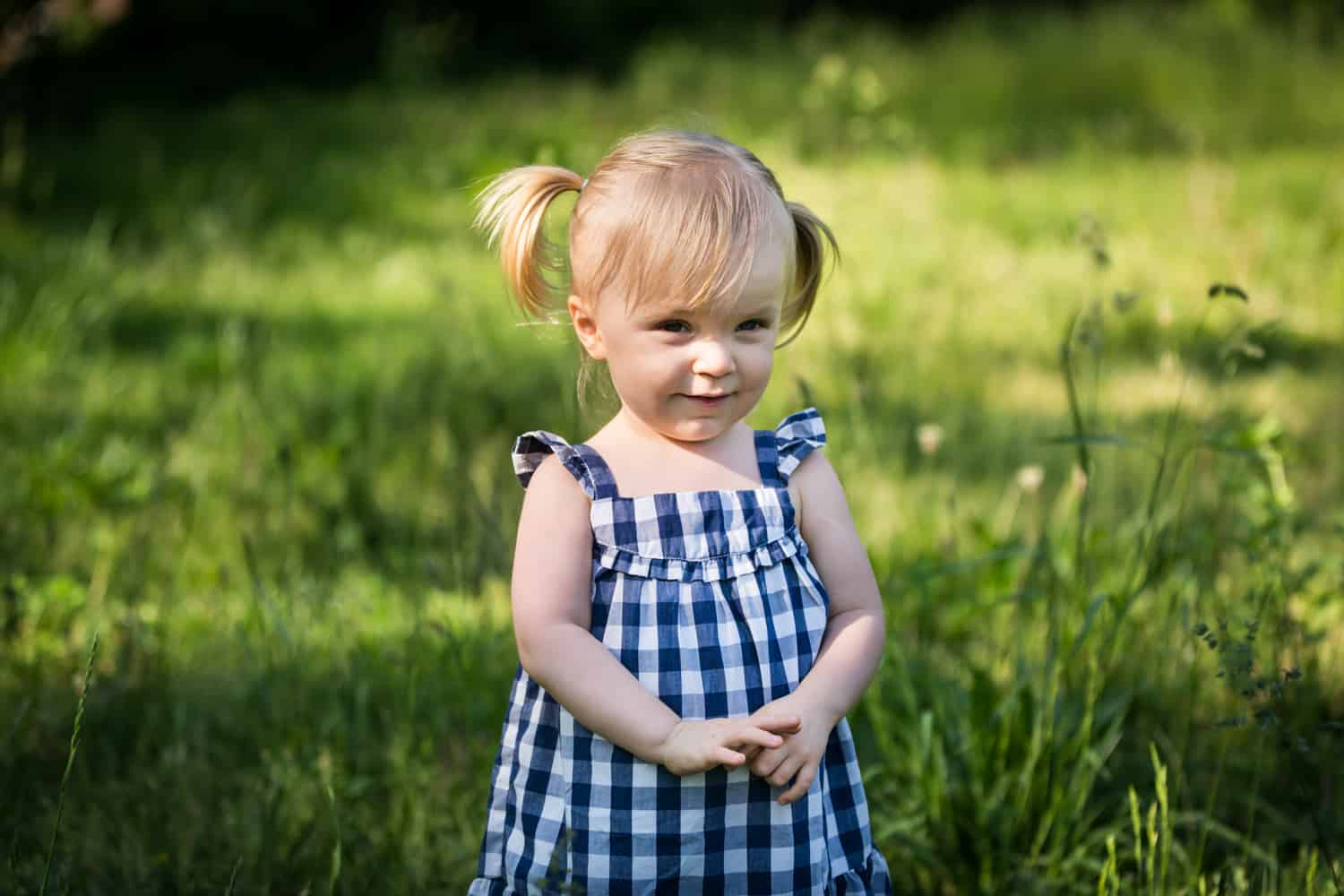 Little girl wearing blue and white gingham dress in Forest Park for an article on toddler portrait tips