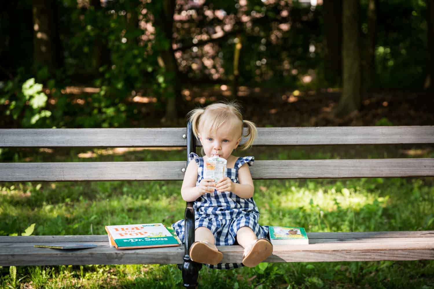 Little girl with pigtails drinking from juice box on bench during a Forest Park family photo shoot