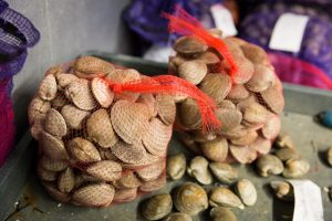 Bags of clams for an article on website photography tips