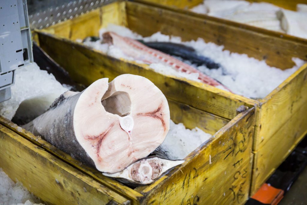 Cut fish on ice in boxes