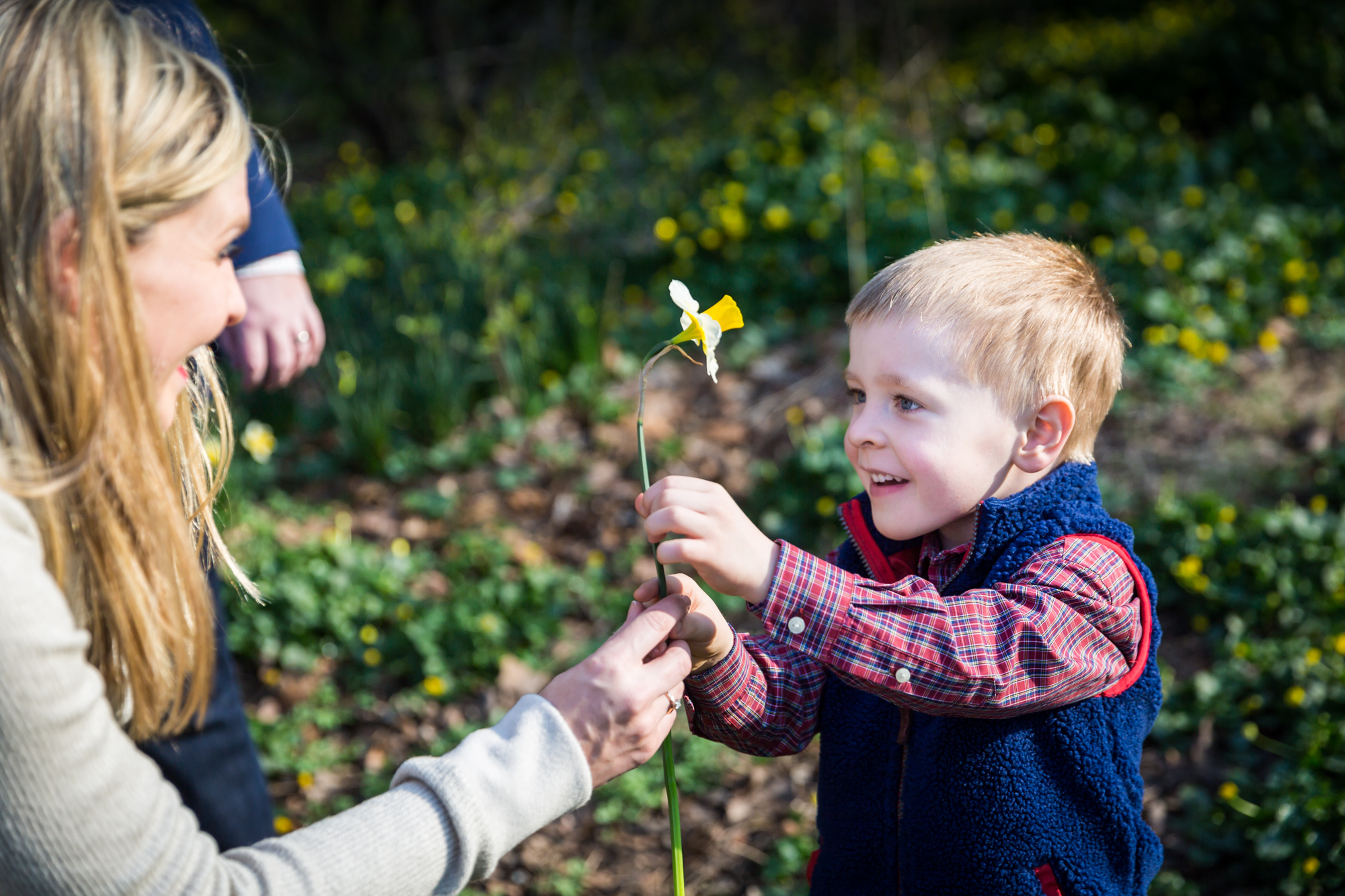 Mother and child with daffodil for an article on the best family portrait poses