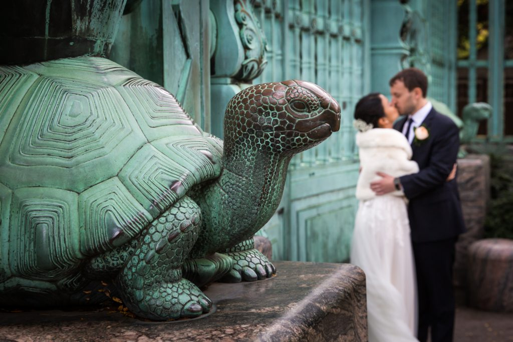 Green turtle of Bronx Zoo gates with bride and groom kissing in background