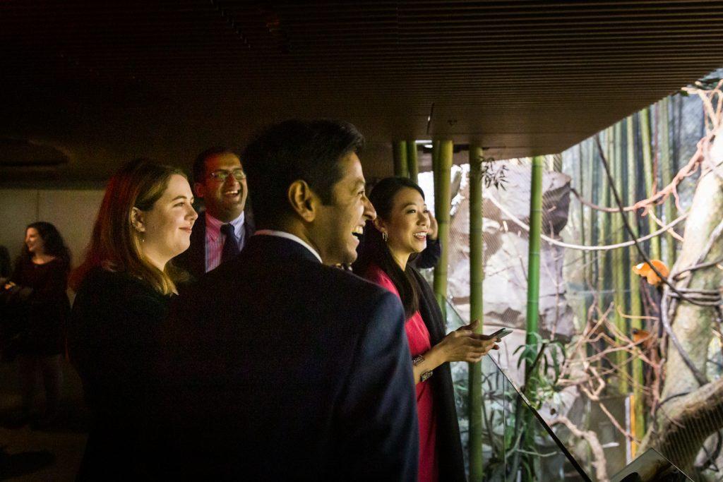 Guests enjoying Madagascar exhibit at Bronx Zoo wedding