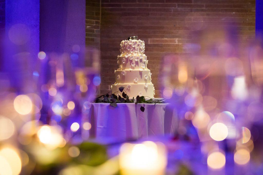 Wedding cake seen through lights at Bronx Zoo wedding
