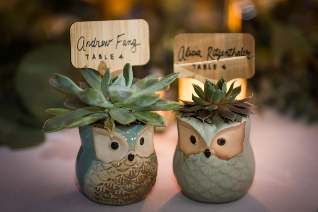 Owl pots with succulents for guest favors at a Bronx Zoo wedding
