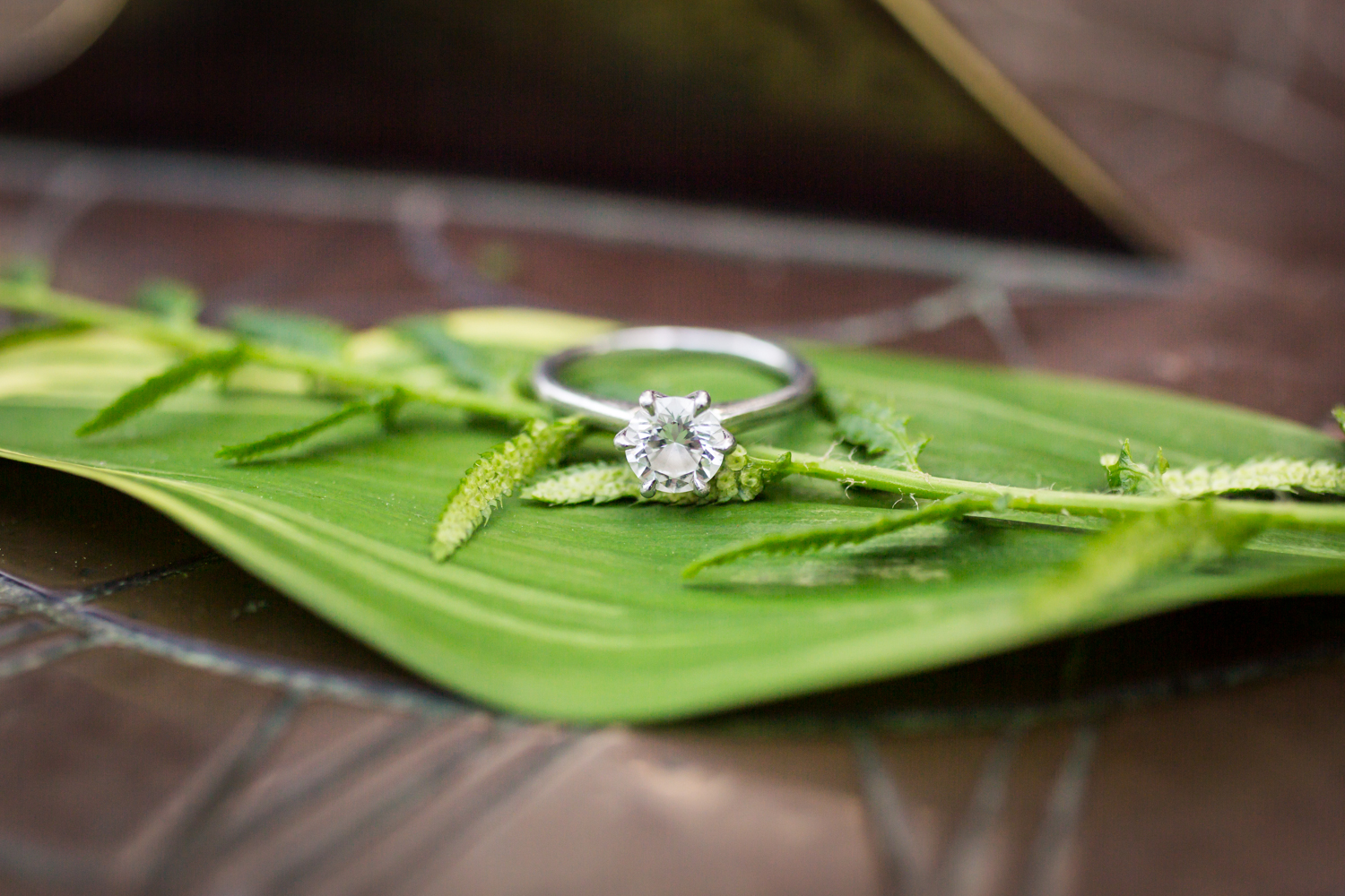 Engagement ring on leaf