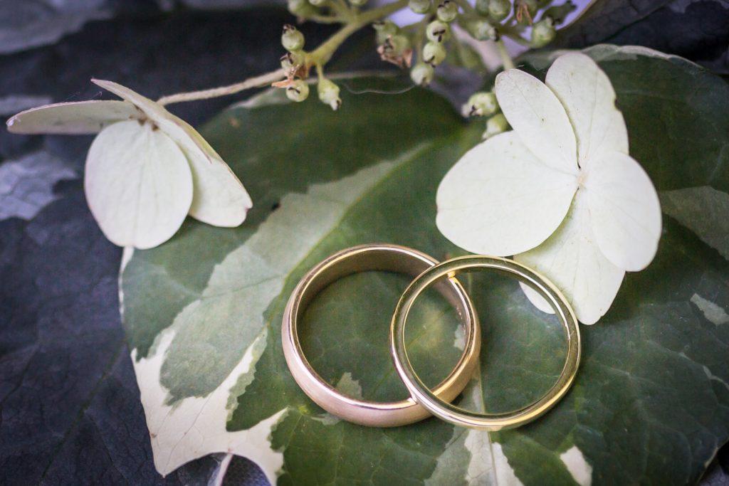 Gold wedding rings on ivy leaves for an article on how to modernize your wedding