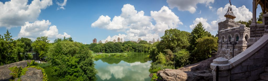 Panoramic view of Central Park from the top of Belvedere Castle
