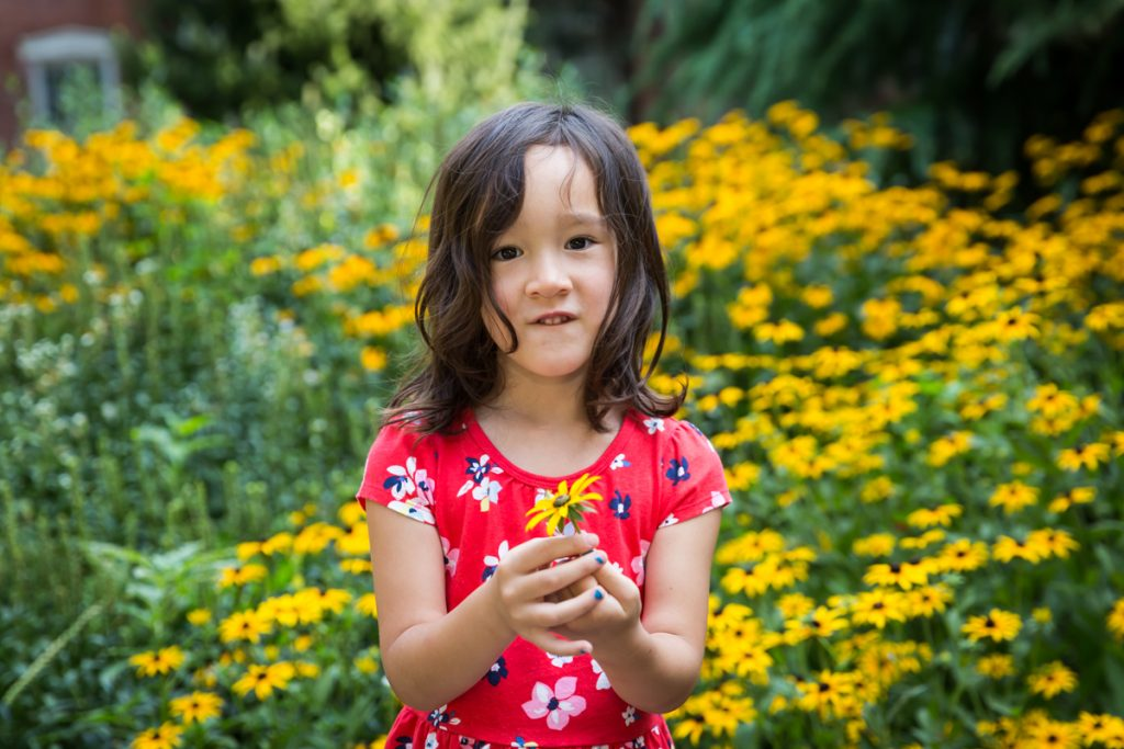 Little girl wearing red dress holding yellow daisy