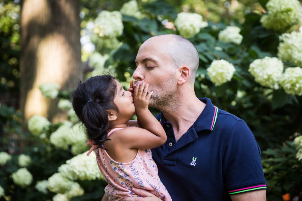 Little girl kissing father in front of hydrangea bush