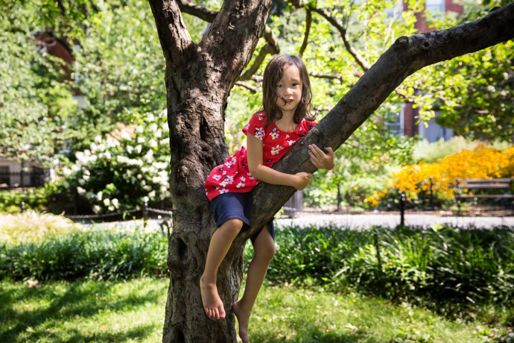 Little girl sitting in tree during a Washington Square Park family portrait