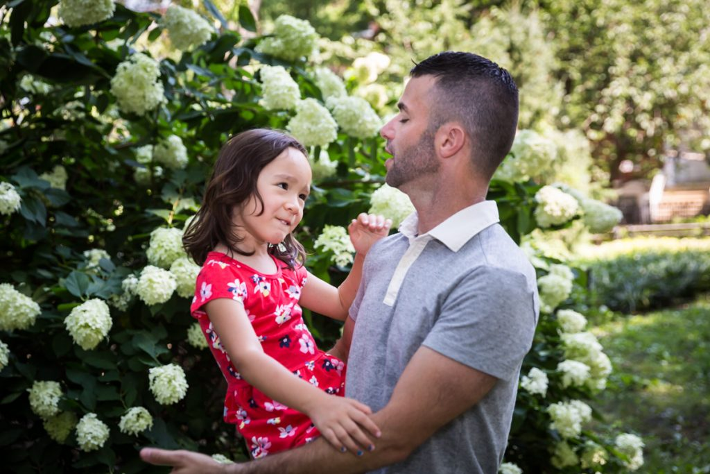Father and daughter playing in front of hydrangea bush